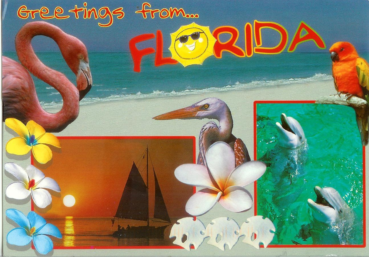 Greetings from florida remembering letters and postcards greetings from florida kristyandbryce Image collections