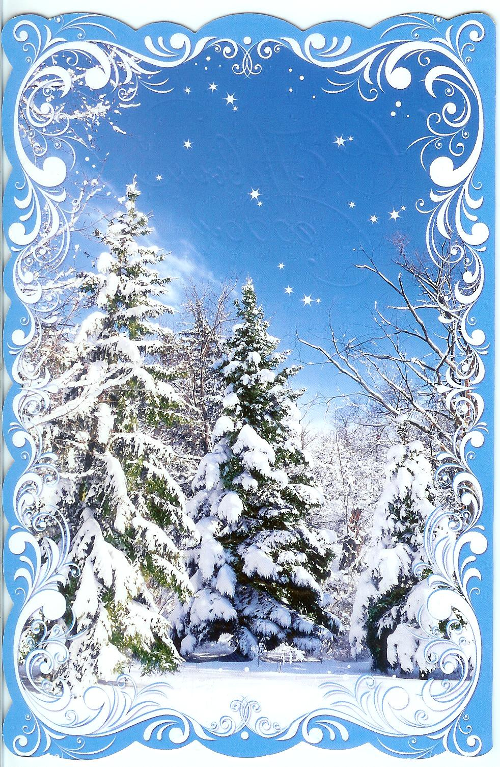 Christmas card from belarus remembering letters and for Most beautiful christmas photos