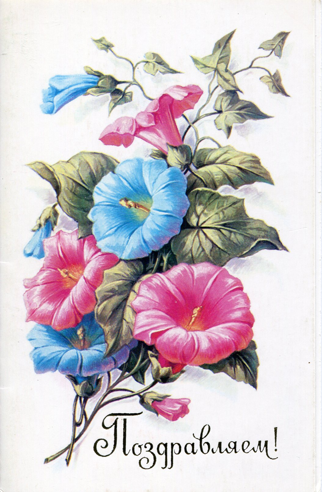 Estonia tags art card flowers trees native plants holiday stamps