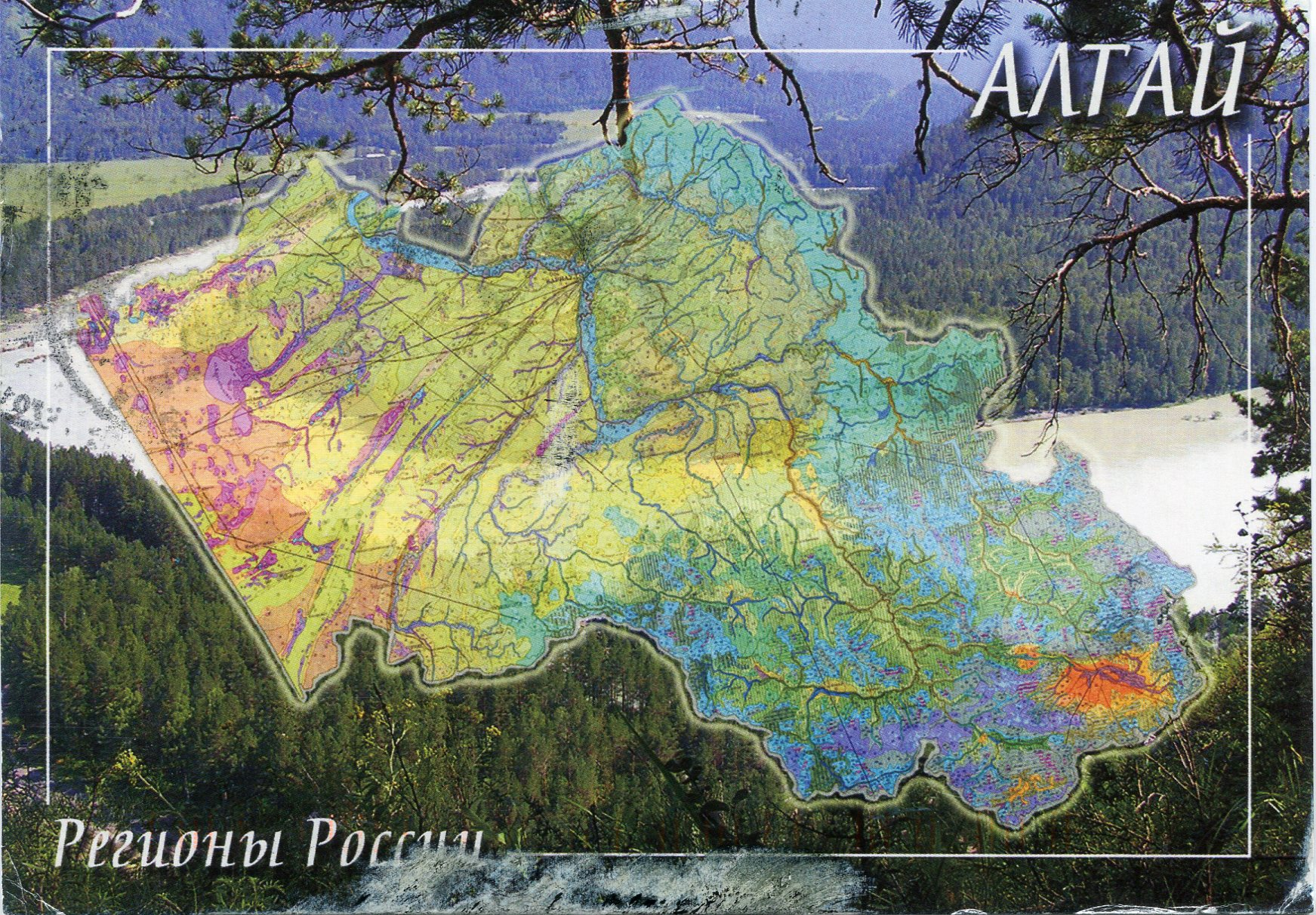 Where is Altai