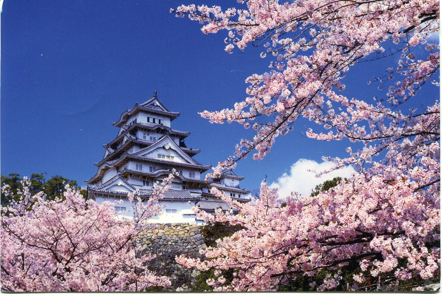 Himeji Castle | Remembering Letters and Postcards