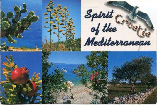 Croatia - Plants