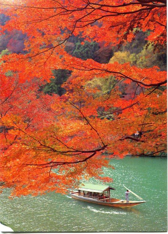 Japan - Arashiyama