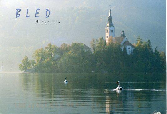 Slovenia - Blend Island Swans