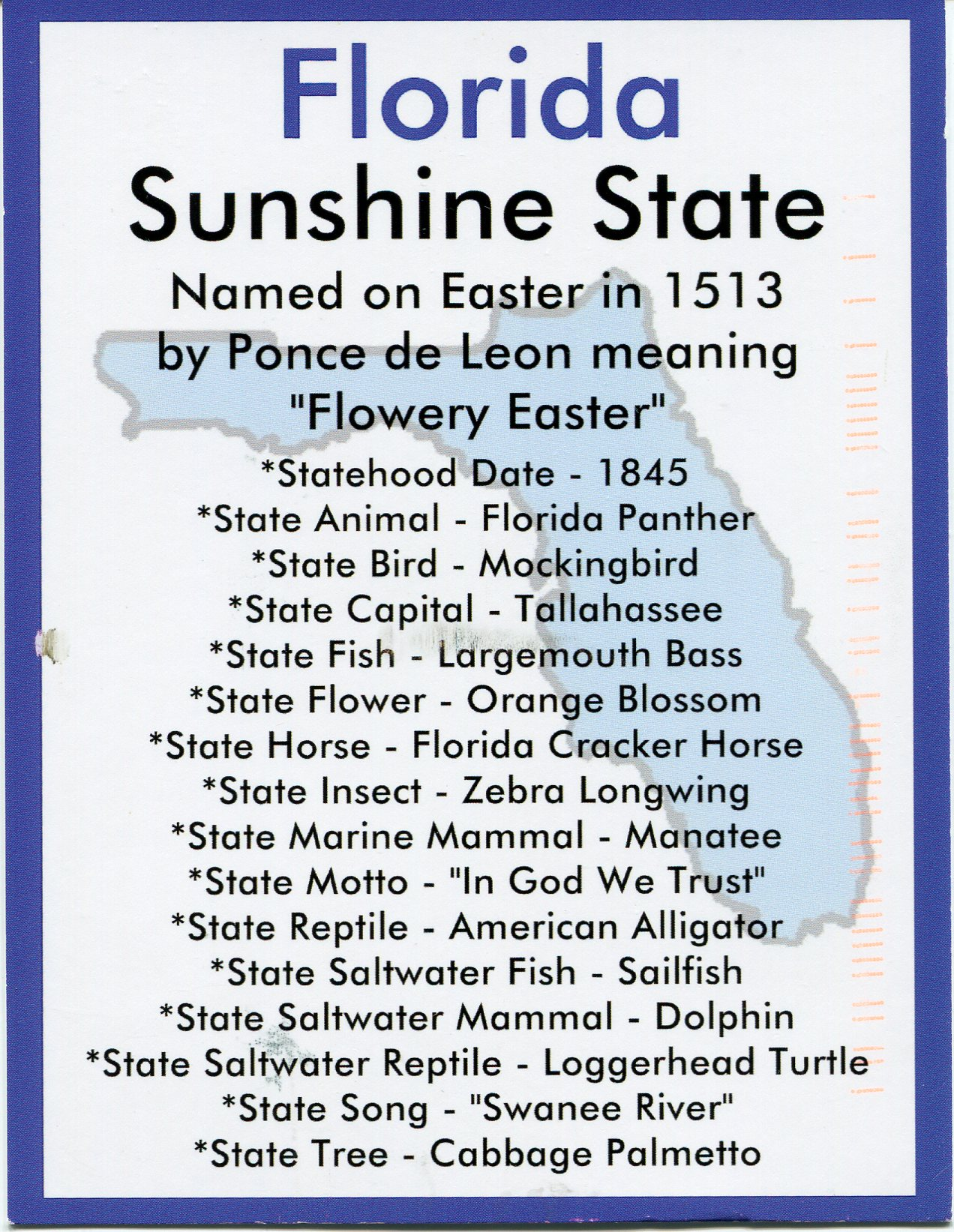Usa – Letters Info Postcards And Card Remembering Florida