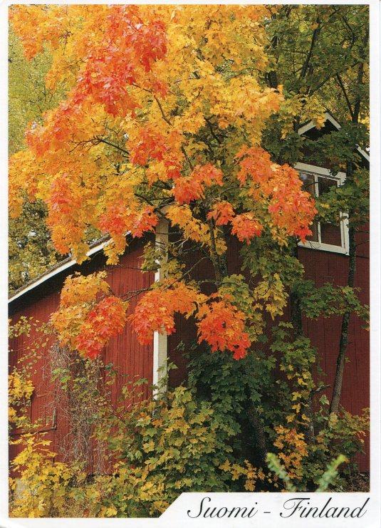Finland - Autumn