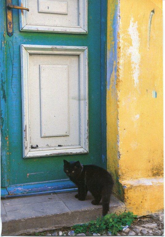 Poland - Black Cat  at the Door