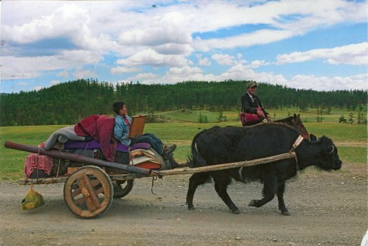 Mongolia - Moving to Summer Pastures