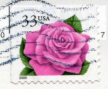 USA - Florida - Parrots stamps