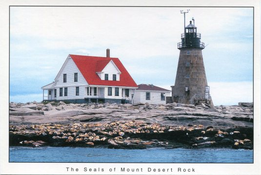 USA - Maine - Mount Desert Rock LH and Seals