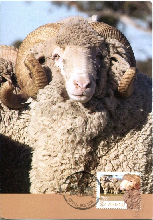 Australia - merino Sheep and Stamp