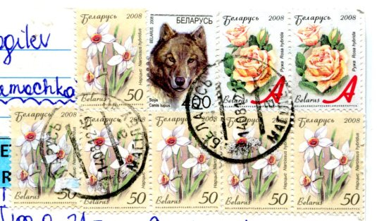 Belarus - Wheat stamps
