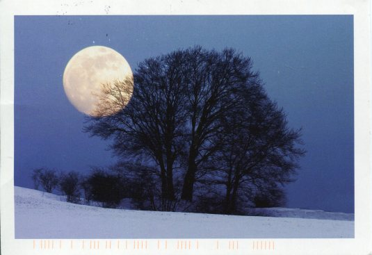 Germany - Full Moon in the Trees