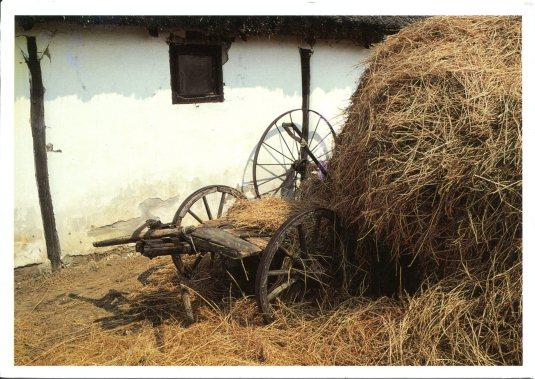 Germany - Hay