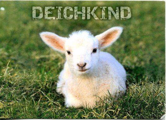 Germany - Lamb