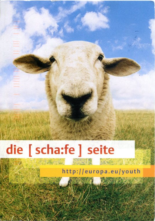 Germany - Sheep