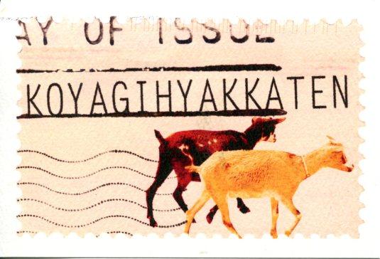 Japan - Goats