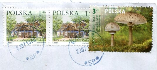 Poland - Bacus Dog stamps