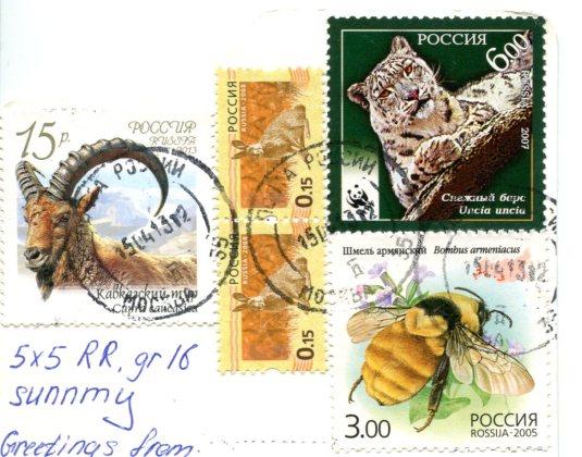 Russia - Leopard fun stamps
