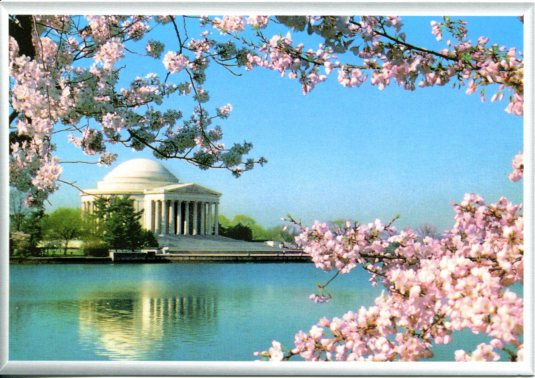 USA - DC - Jefferson memorial