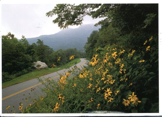 USA - Virginia - Blue Ridge Pkwy Rockfish Gap