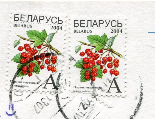 Belarus - Nuthatch stamps