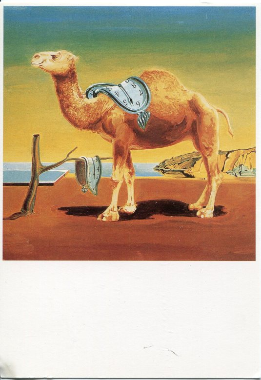 Netherlands - Camel Painting