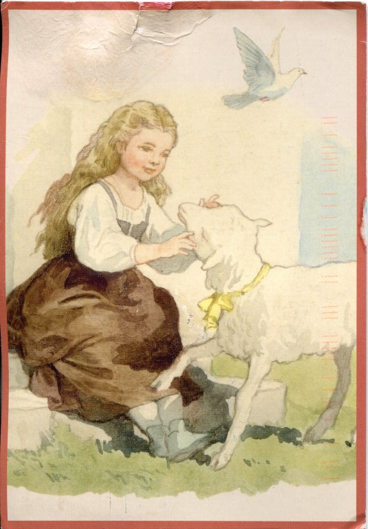 Russia - Lamb Illus Childrens book