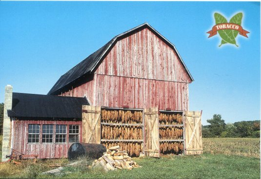 USA - Maryland - Tobacco Barn