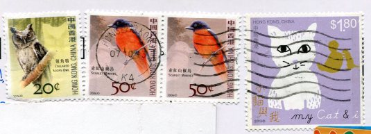 China - Camels in Gianxu China stamps Hong Kong