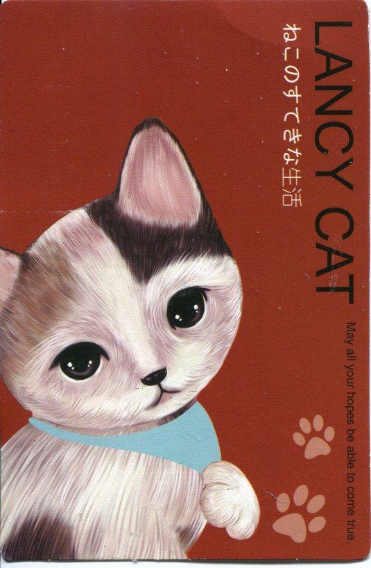 Taiwan - Lancy Cat