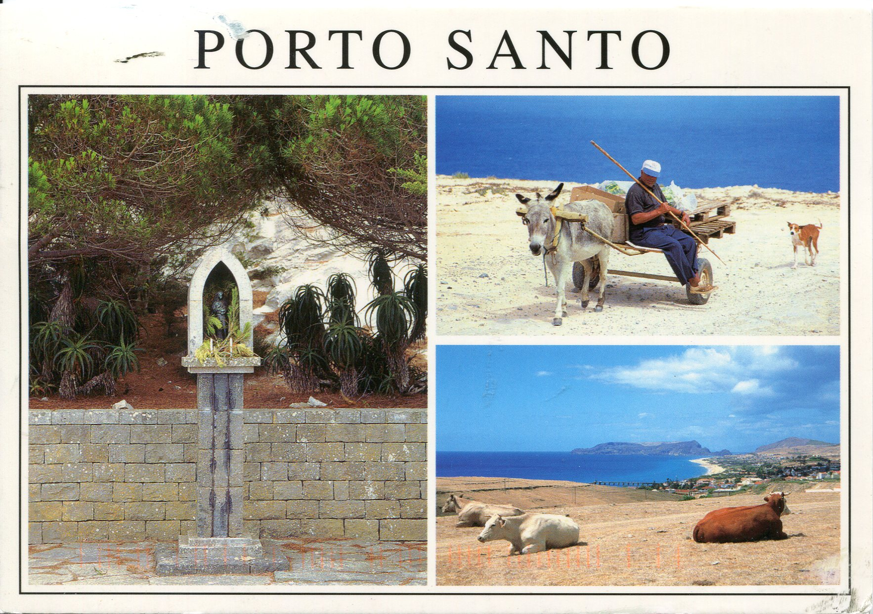 Porto Santo Portugal  city photos gallery : Porto Santo