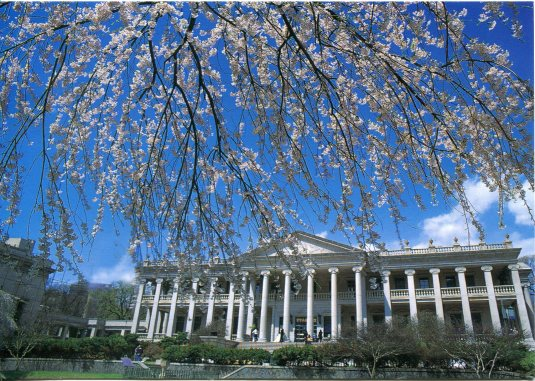 Korea - Doksu Palace