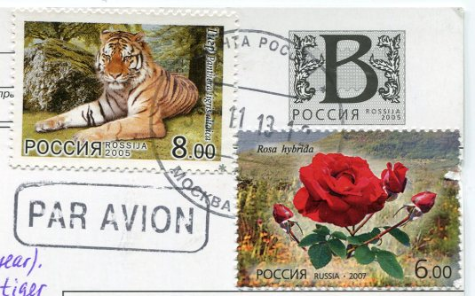 Russia - White Tigers stamps
