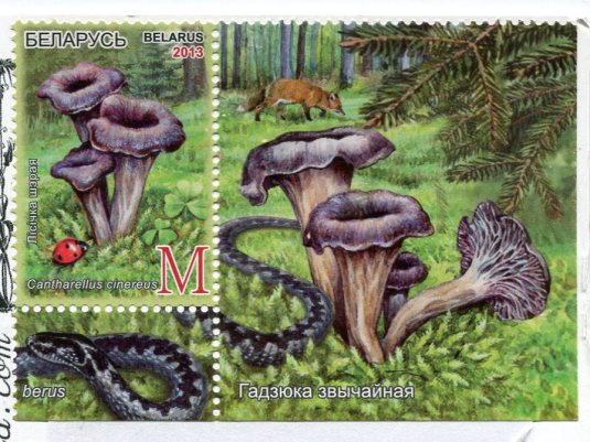 USA - Florida - Anastasia Island Lighthouse stamps Belarus