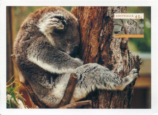 Australia - Koala and Stamp