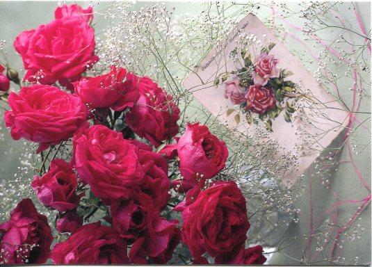 Estonia - Roses