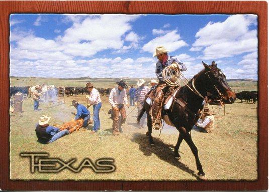 USA - Texas - Branding