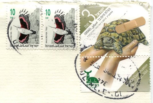 Israel - Victoria Kirdiy cat on shelf stamps