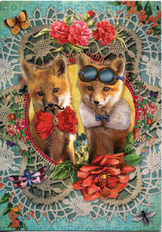 Netherlands - Two Foxes