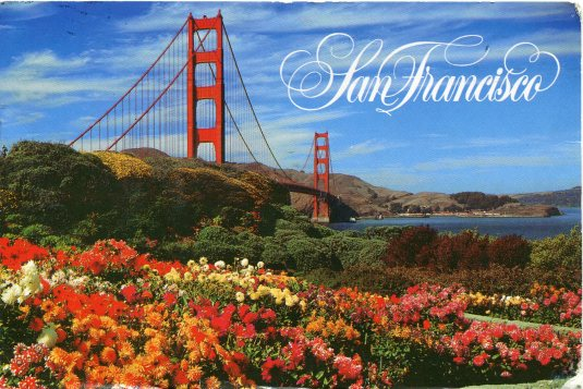 USA - California - Golden Gate Bridge and Flowers